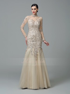 Sheath/Column Net High Neck Long Sleeves Applique Floor-Length Dresses